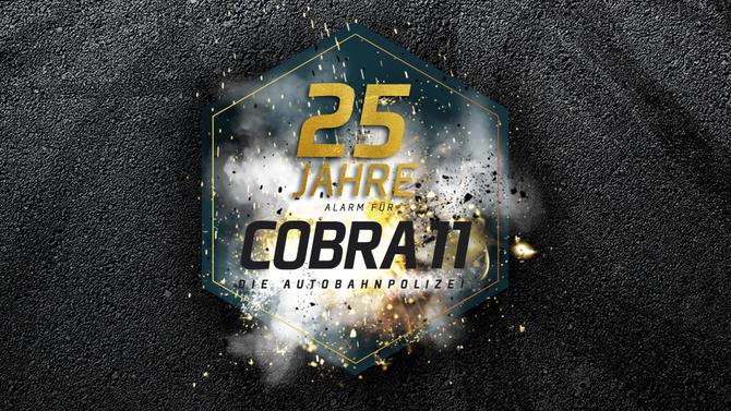 Cobra11 Themes